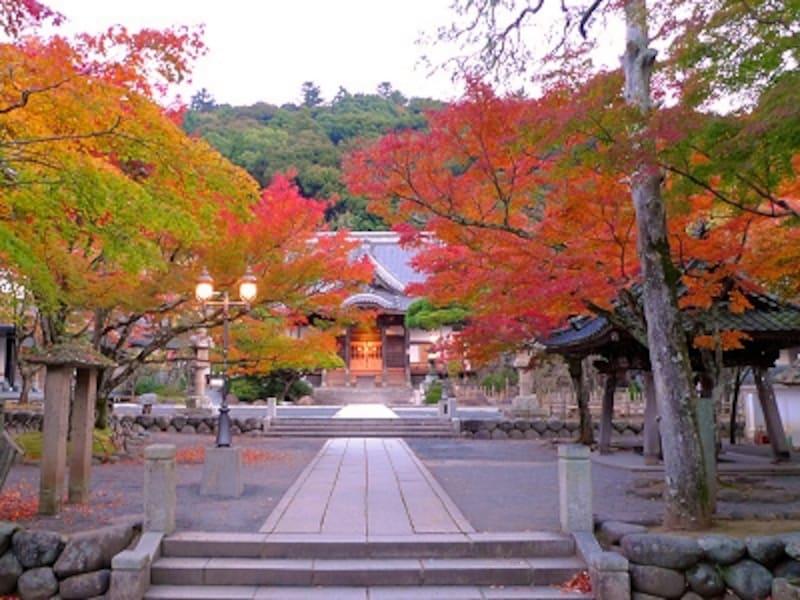 11月に紅葉が見頃の修善寺温泉