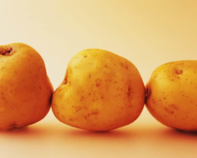 ジャガイモの栽培方法・育て方・収穫時期とは?