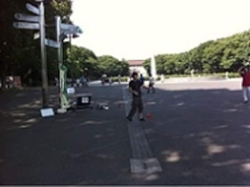上野公園にて。
