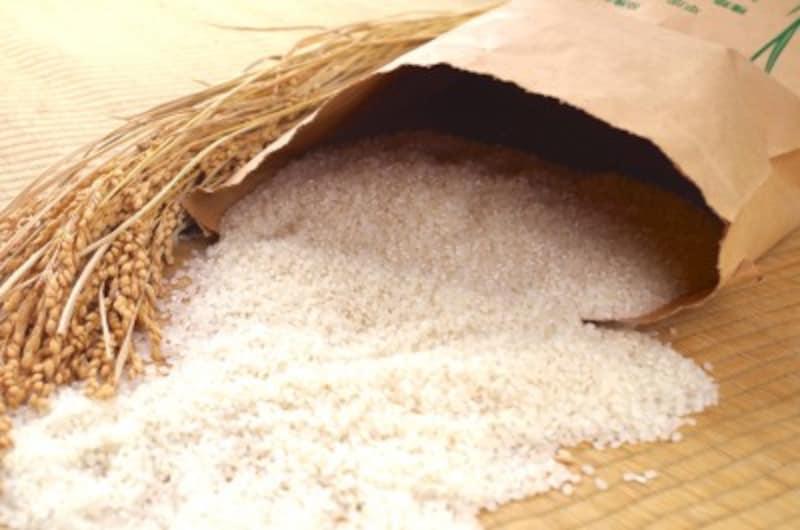 お米について自由研究!作り方・歴史を学習