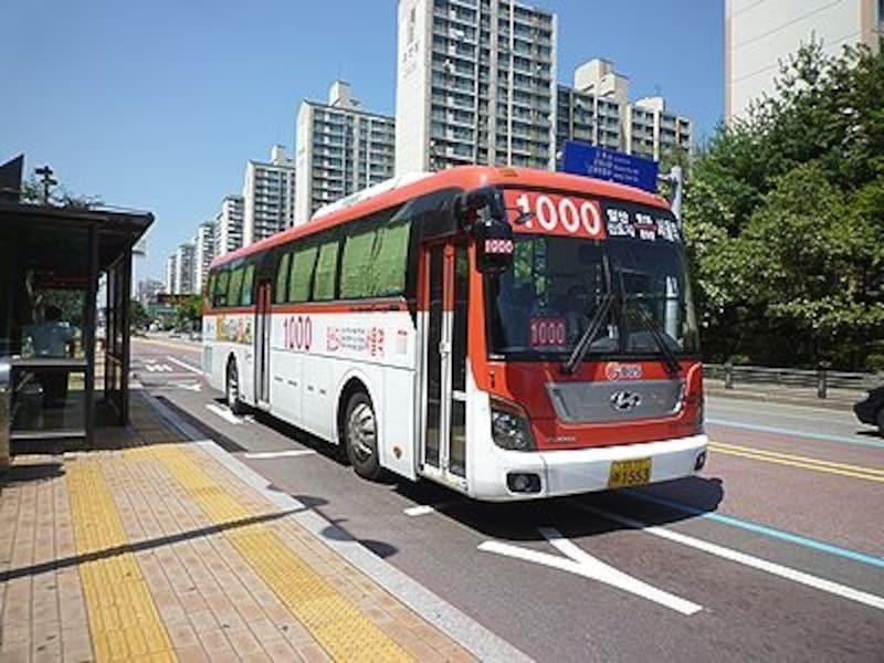 バス路線はソウル市内を網の目のように張り巡らされています。バス番号を頼りに乗車して!