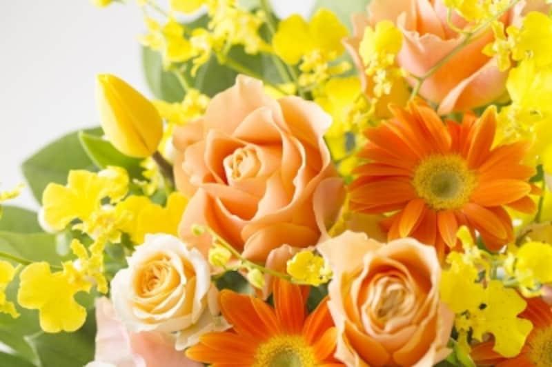 パーソナルカラー診断でスプリングタイプ(春)の人の特徴とは?