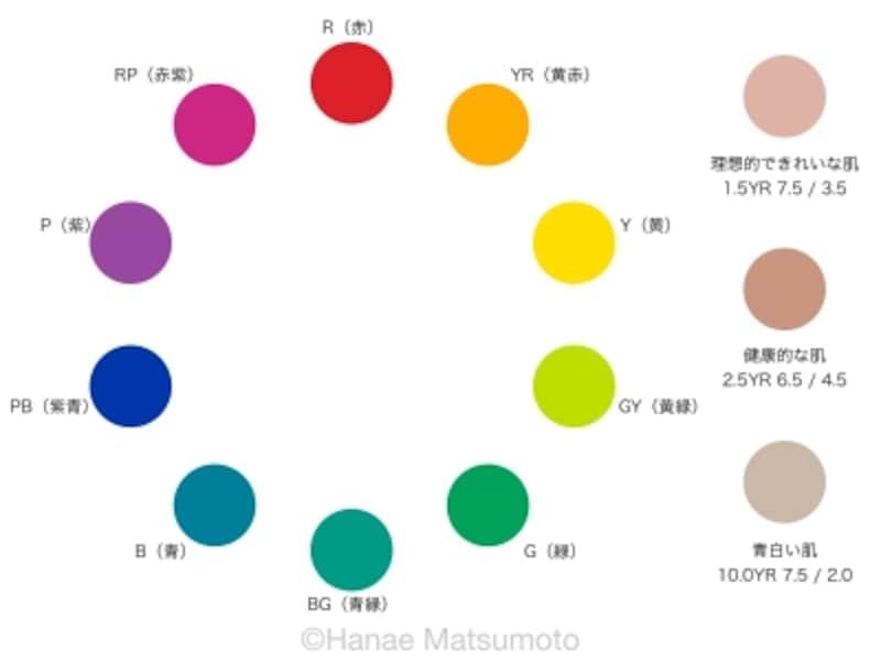 色相環、理想的なきれいな肌色、健康的な肌色、青白い肌色のサンプル