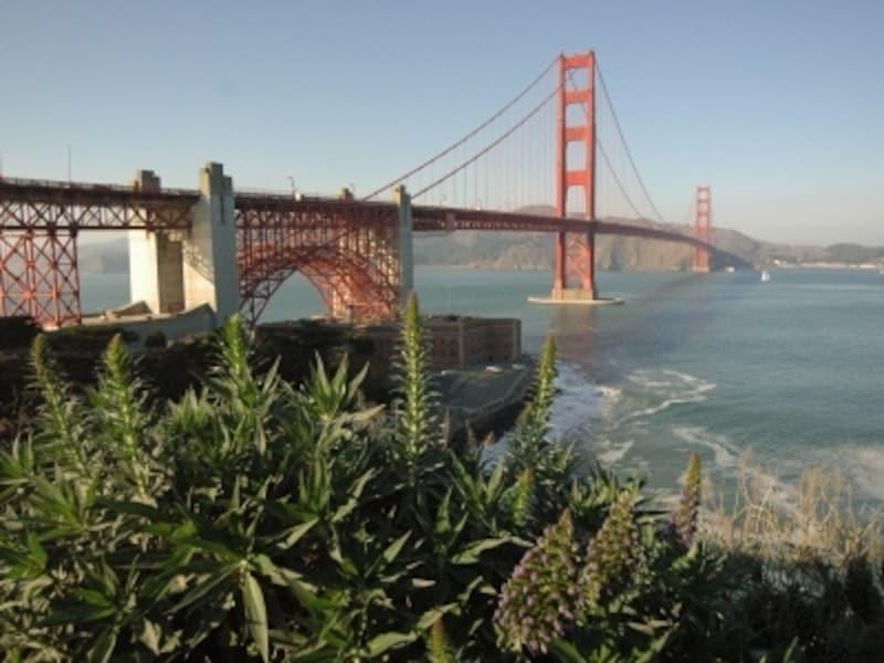 サンフランシスコ側から見たゴールデンゲートブリッジ