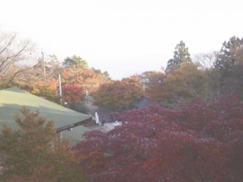 大山阿夫利神社下社(2)