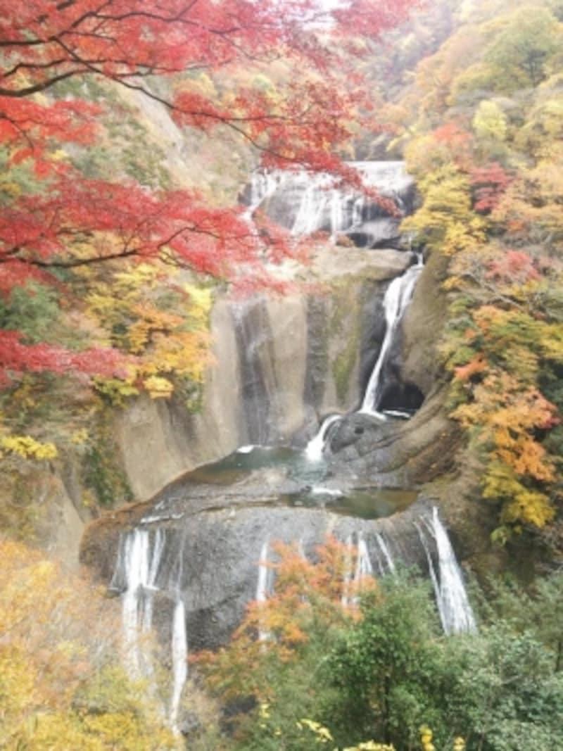 袋田の滝(1)