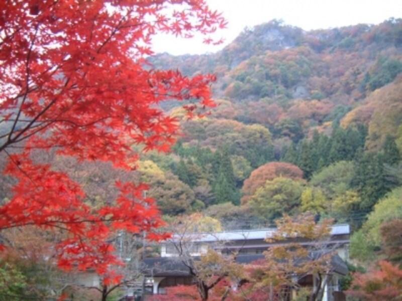 袋田の滝周辺の紅葉(1)