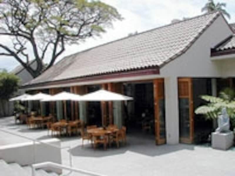 オープンエアで清々しい併設のカフェはランチタイムのみ営業