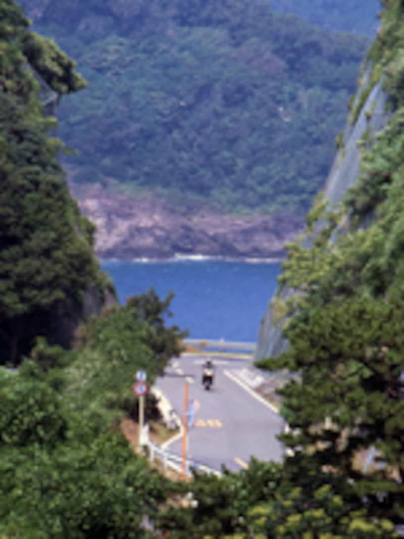 海だけではなく、山の清々しさが味わえるのも伊豆の魅力