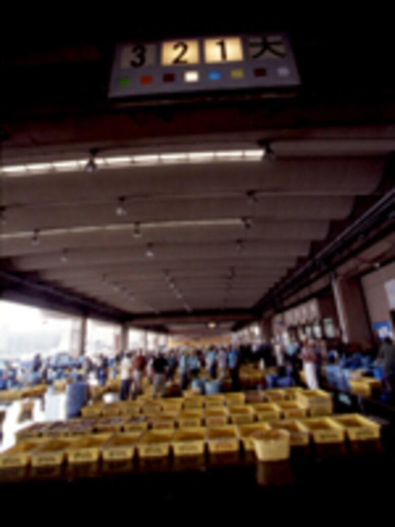 銚子港魚市場の早朝の様子
