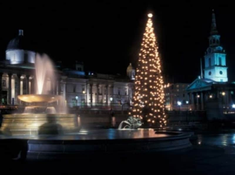 ロンドンのトラファルガー広場にkザられる巨大ツリー。ロマンティックな輝きですundefined©visitlondonimages/britainonview