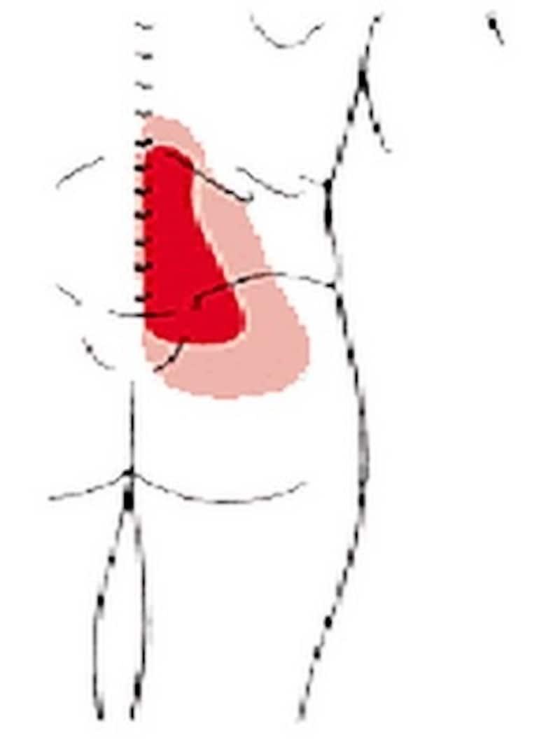 大殿筋はお尻の真ん中の筋肉