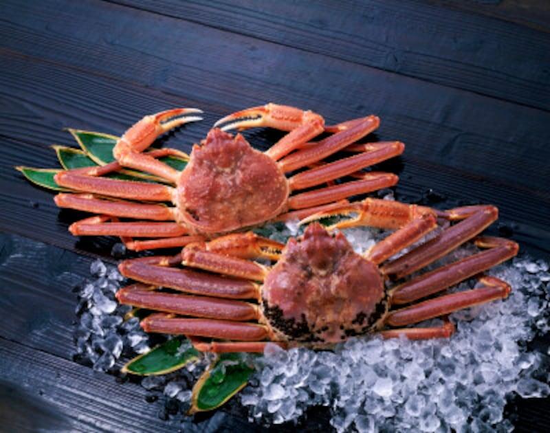 カニやエビの殻にも食物繊維が豊富
