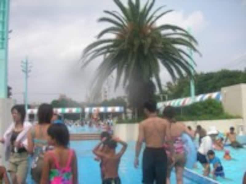 楽しいプールの風景