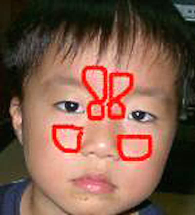 赤で囲んだあたりに副鼻腔があります