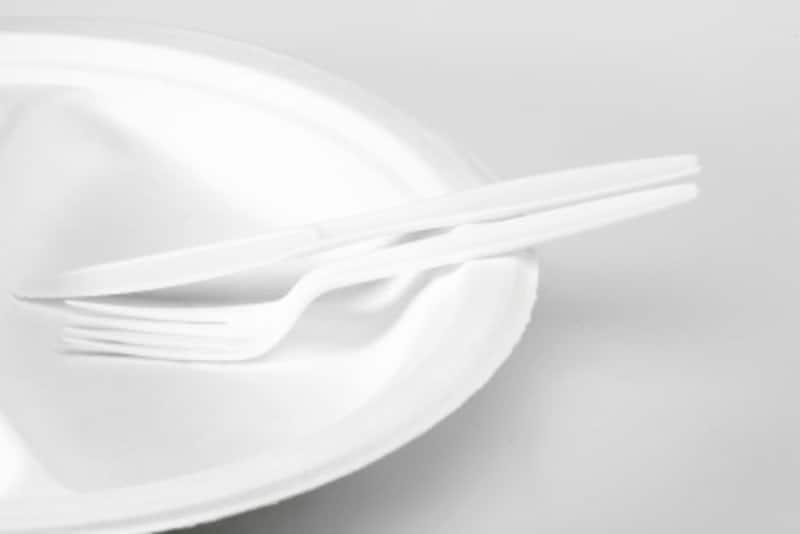 きれいなプラスチックの食器ですがそのデメリットも指摘されています。