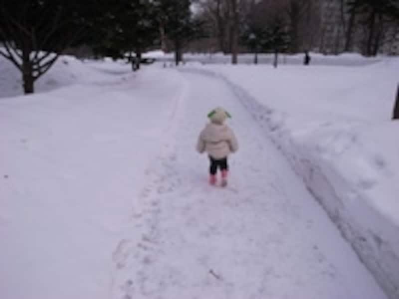 お掃除する気も失せる、寒い雪の朝も……