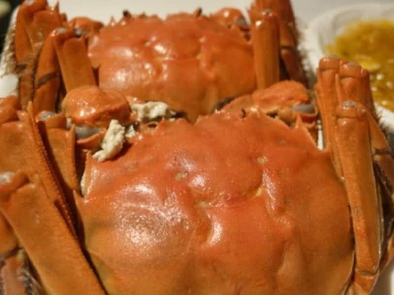 「昨日は蟹を5ハイも食べたよ!」秋になると蟹話で持ち切りの上海