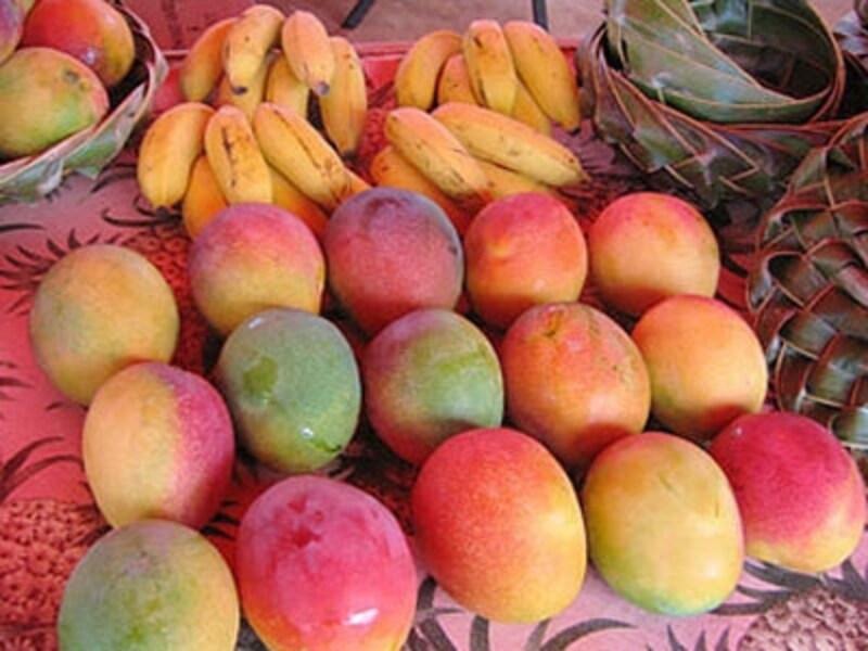 ハワイ産のアップルマンゴーとアップルバナナundefinedメイド・イン・ハワイの食材が並ぶKCCのサタデー・ファーマーズ・マーケットにて