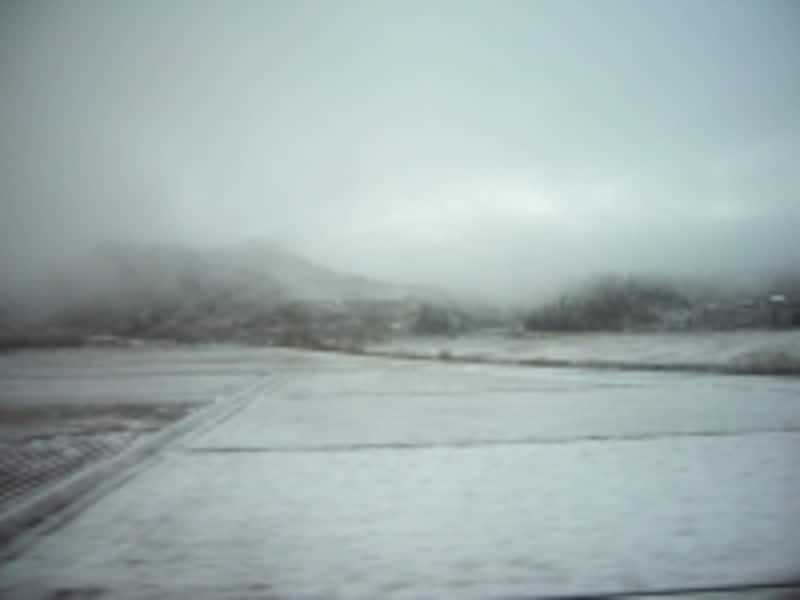 弘前到着直前にカーテンを開けると、外は一面雪景色でした!