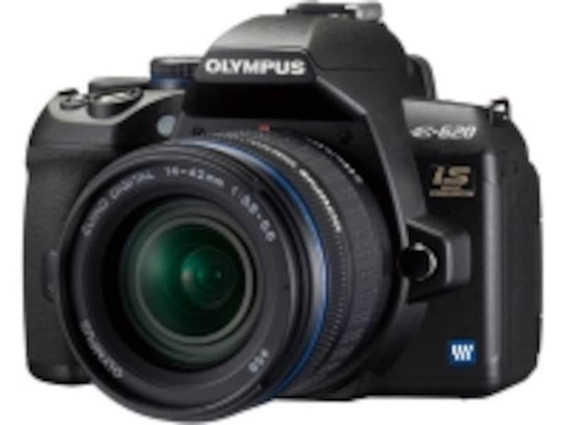 オリンパスとパナソニックのデジタル一眼カメラに搭載されている超音波によるゴミ除去システムはかなり精度が高い。