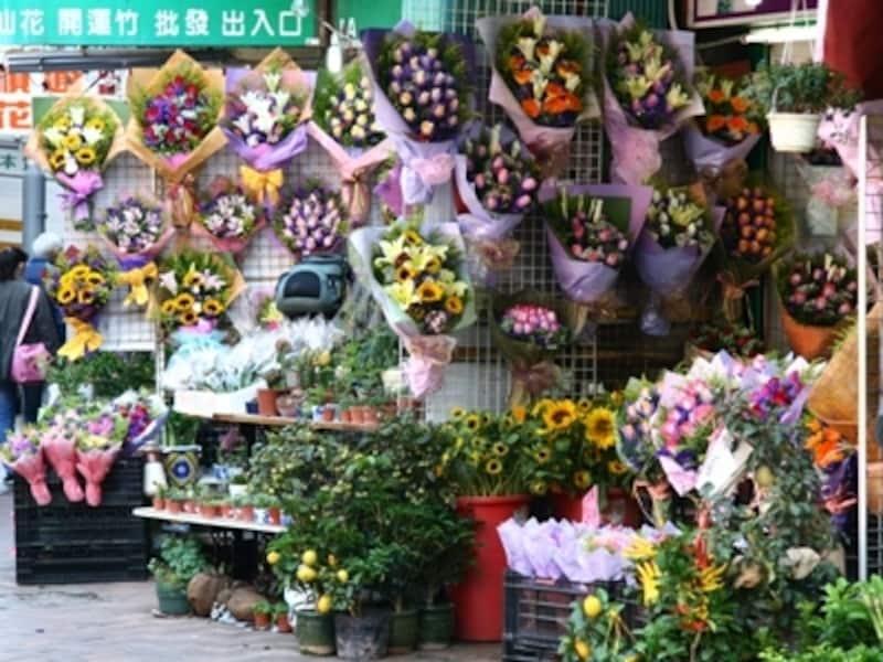 日本にはない珍しい花があるかも