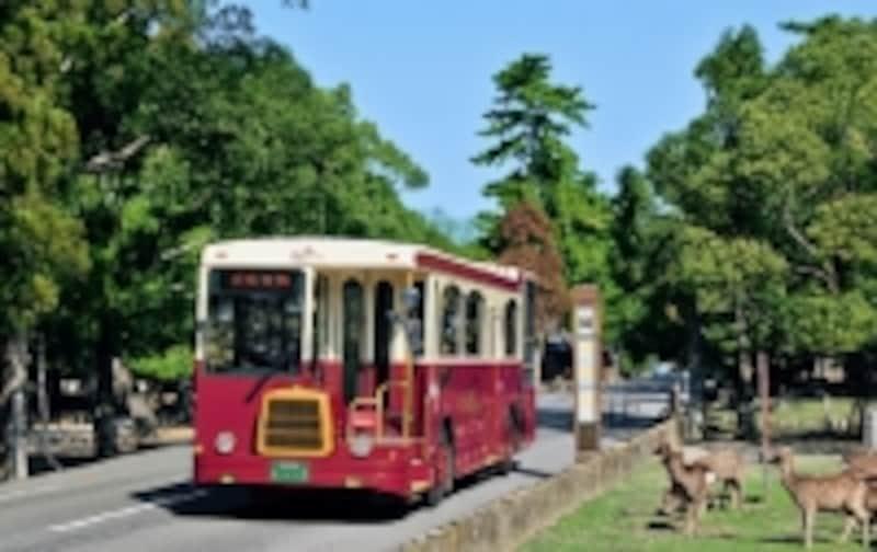 奈良市街を回る通常路線バス「バンビーナ」