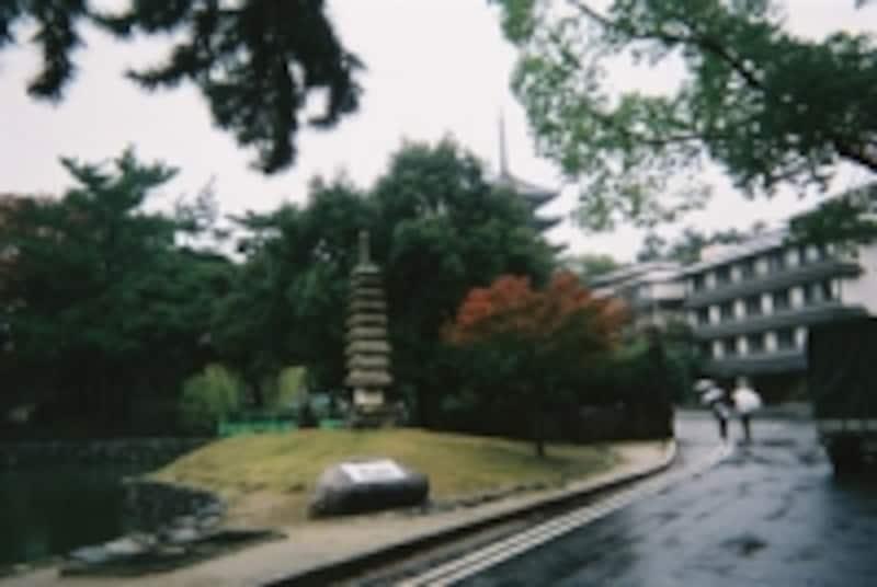 雨が降っても風流な奈良市街ですが…