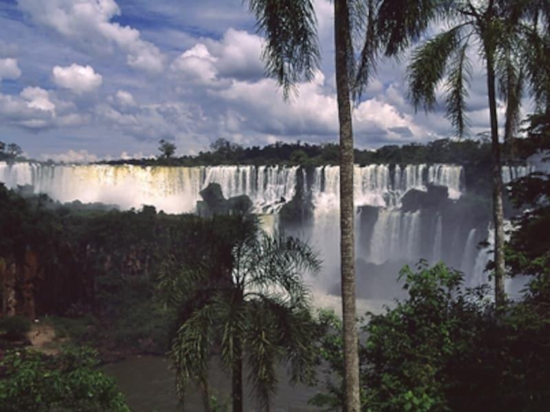 ジャングルに覆われたサンマルティン滝をアルゼンチン側より望む。イグアスの滝の生態系は、アルゼンチン・ブラジル両岸に別々に存在する「イグアス国立公園」というふたつの世界遺産として保護されている ©牧哲雄