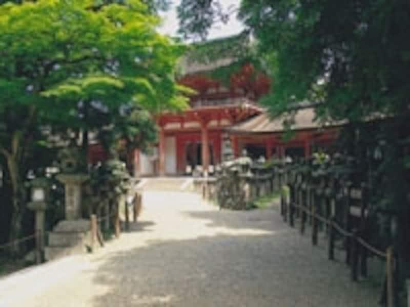 社内の散策も気持ちいい。写真:奈良市観光協会