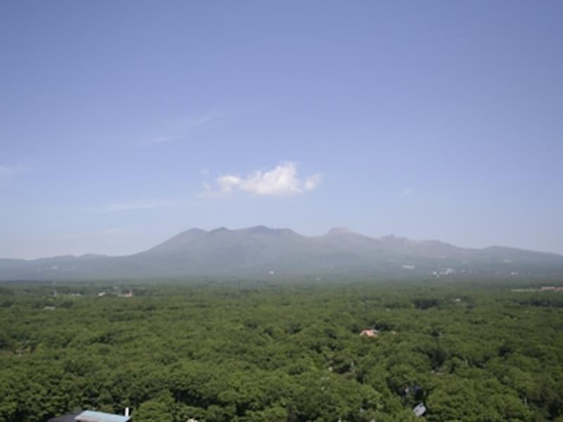 樹海に空に山……。自然と心の落ち着く雄大な眺め