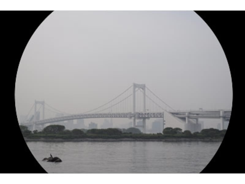 フルサイズでAPS-C用レンズを使った時の概念図。こういった感じで画面隅が撮影できない。