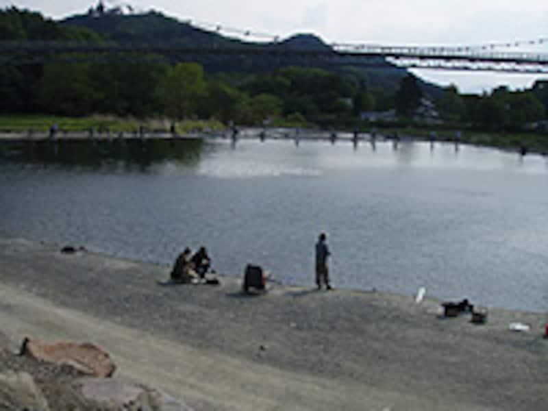 ポンド型管理釣り場では貴重なシャローとなる岸際。なにげなく釣っているアングラーの足元にも大物が潜んでいる