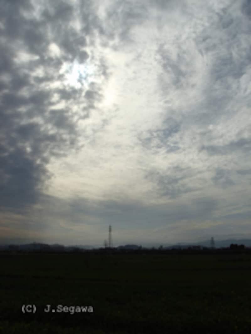 緑と空-2