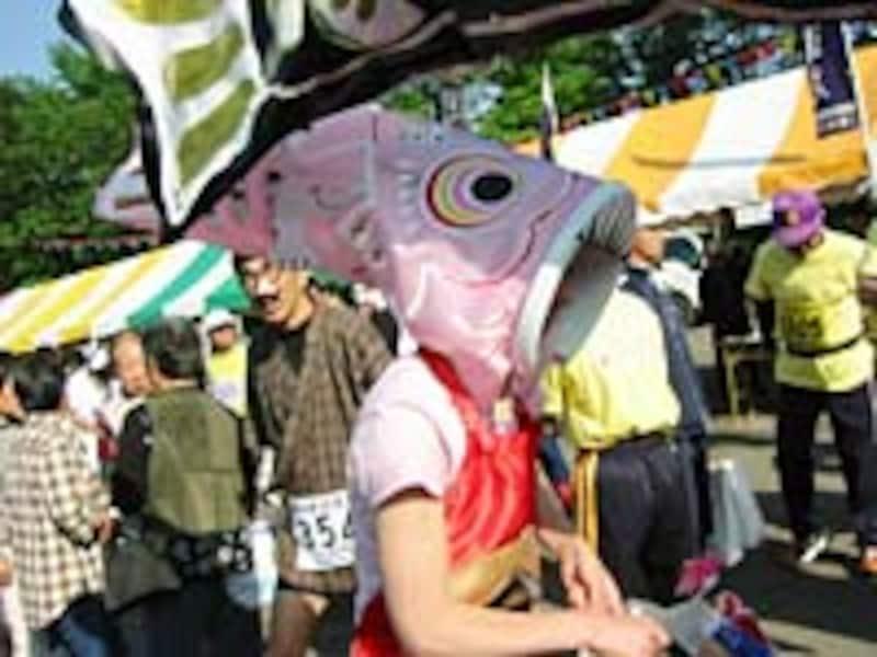 ピンクの鯉
