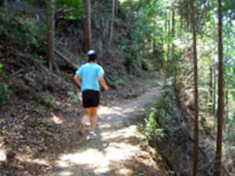 道幅が50cmもないような崖っぷちを走ることもある。気は抜けない