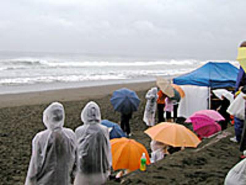 雨の大会観戦中