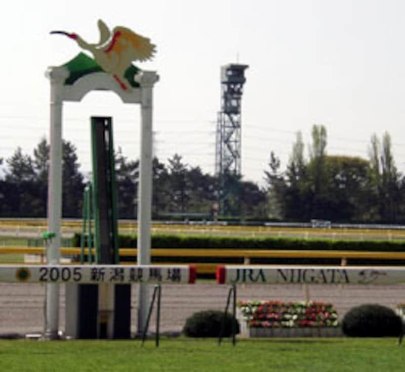 JRA新潟競馬場のゴール板
