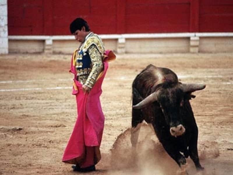 スペインといえば闘牛にフラメンコ。どの町でも見られると思えば大間違い!
