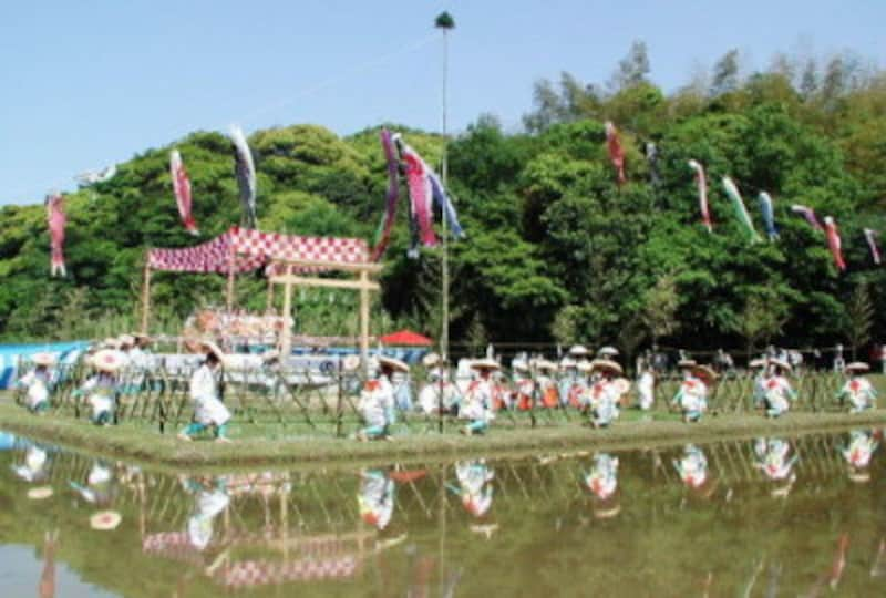 早乙女が田植えをするお祭りが全国各地に残っています。こちらは山口県下関市「お田植祭」。(写真提供:音で綴る日本各地の祭り&行事)