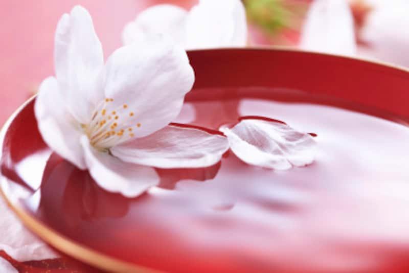 お花見には、マナーも風情も大切です