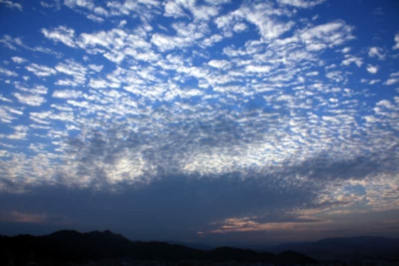 うろこ雲(ウロコ雲)?いわし雲?羊雲?鯖雲?……秋の雲の見分け方