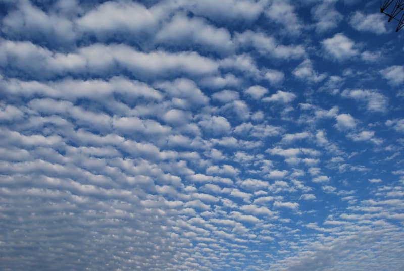 秋の雲:鯖雲