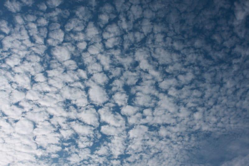 秋の雲:うろこ雲