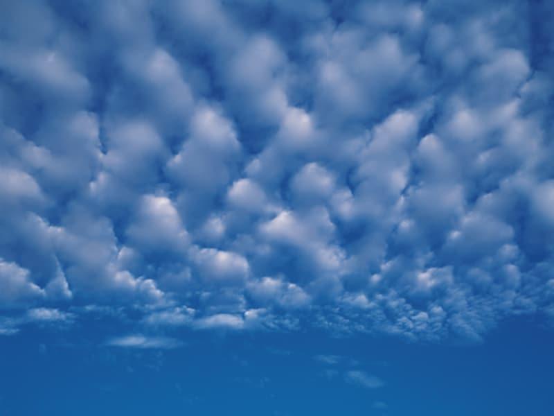 秋の雲:ひつじ雲