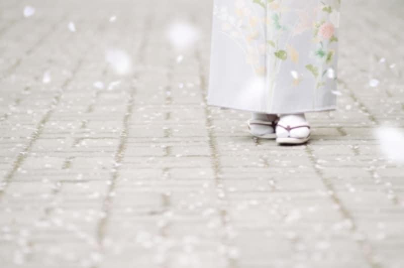 親族が結婚式で着物を着るマナーを解説