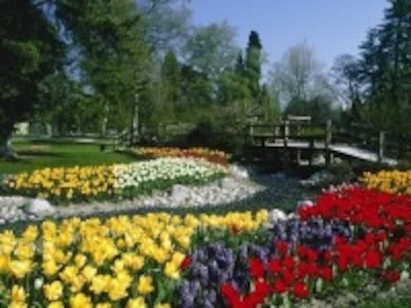 公園からは、レマン湖の対岸にヨーロッパ最高峰、モンブランの優美な姿も