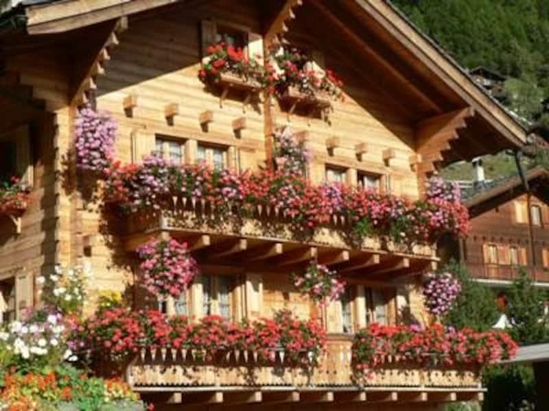 春になると、窓辺に咲く花を見る楽しみも増える