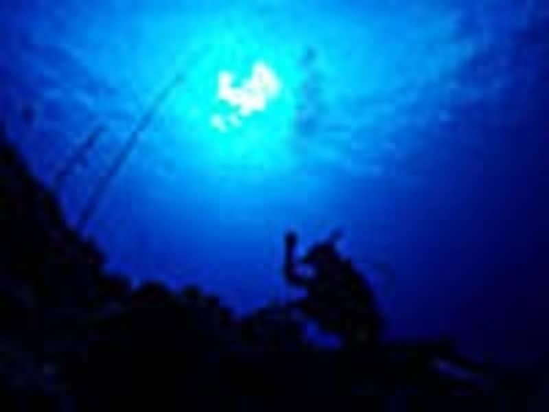 地形派ダイバーなら潜りたいダイナミックなドロップオフポイントundefined写真提供:ぷしぃぬしま