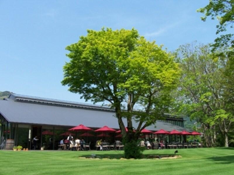 四季折々の自然が肌で感じられる広々とした芝生空間に、美術館、レストラン、ショップ、特別展示「ル・トラン」などが点在する